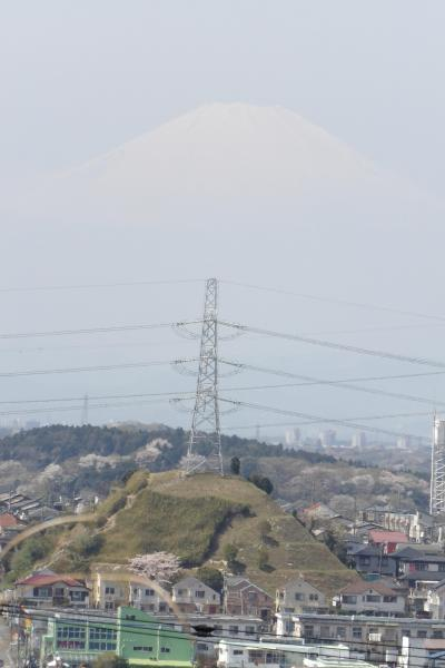 天園-円海山ハイキングコースの富士山のビュースポット