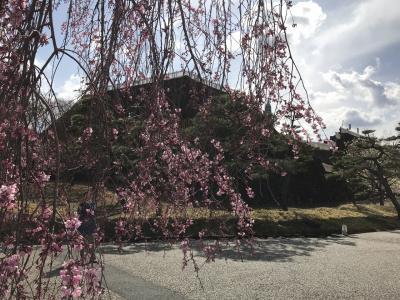 山梨県の城跡巡り:甲府城跡