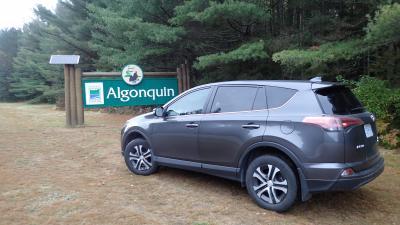 メープル街道&ナイアガラの一人旅【Day5】~アルゴンキン州立公園ドライブ