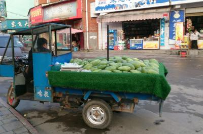ハノイから陸路中国の雲南省へ 8 羅平から昆明