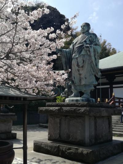 京急?で、鎌倉へ。