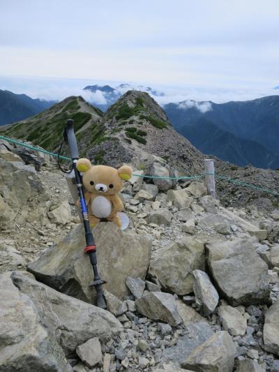 甲斐駒ケ岳 仙丈ヶ岳 行ってクマす。北沢峠~仙丈ヶ岳?