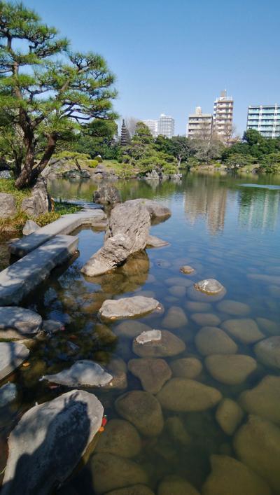 清澄白河庭園で見る文左衛門の庭石