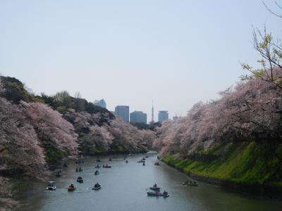 東京2018桜 【2】皇居