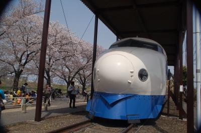 摂津市にある新幹線公園でお花見