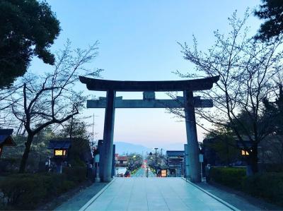 桜と共に…夕暮れ時の武田神社