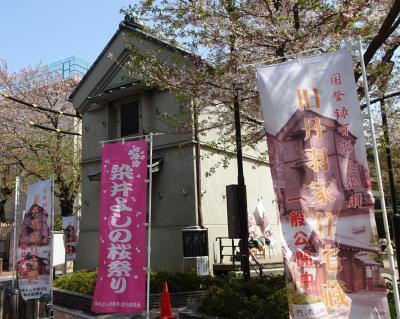染井吉野桜祭り(巣鴨~駒込)
