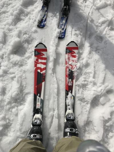 孫と春スキー・20数年振りにスキー場へ・・昔取った杵柄で滑れた?というほどの傾斜ではないけどね!・と・☆カタクリと花ばな☆