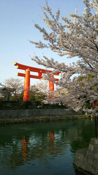 惜別の京都201803