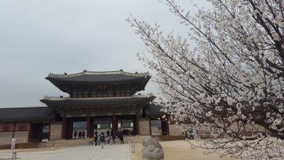 1泊2日初めての海外一人旅in韓国