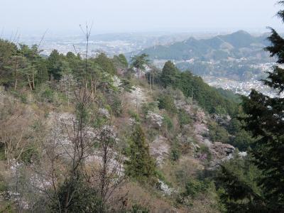 春の御嶽山・日の出山登山