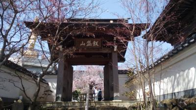 上野原の青苔禅寺で精進料理
