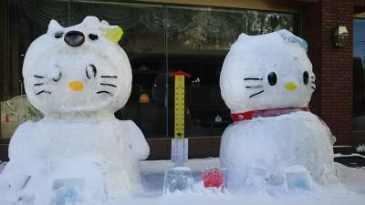30年来の夢、流氷を見に北海道へ・・・しかし流氷は見えずしかも吹雪が来るって②