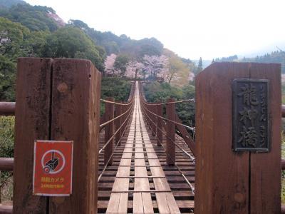 熊本の桜めぐり ★吊り橋 SL フルーツパフェ