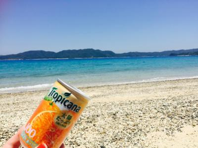 誕生日旅行は久々の国内おひとりさま☆奄美大島へ