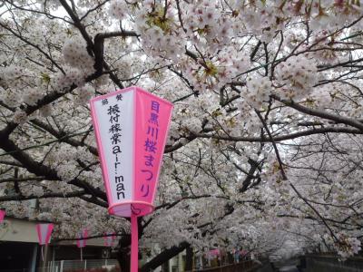 目黒川の桜まつり2018 2018/03/27