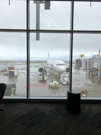 サンフランシスコ&アリゾナ 2018 旅行記3 アメリカン航空 サンフランシスコーフェニックス 搭乗記編