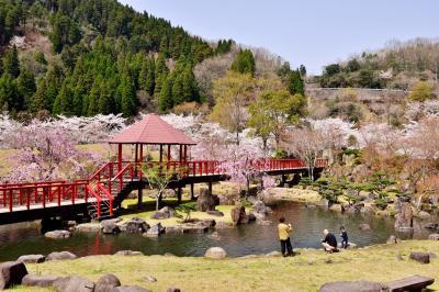 渓石園の桜2018