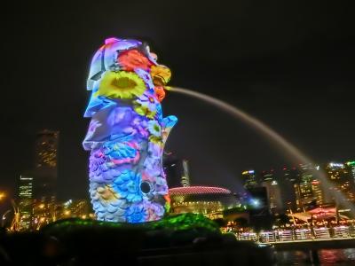 子連れ(11歳7歳)で6年ぶりのシンガポール旅行 ①準備・前泊編②シンガポール到着まで