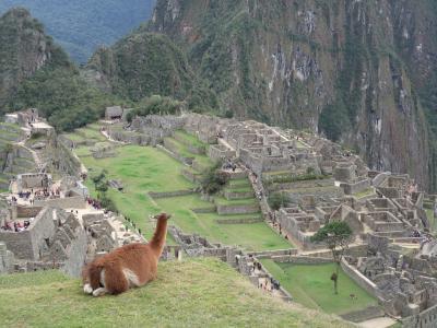 無愛想オバサン、ペルーを旅する。 マチュピチュ編