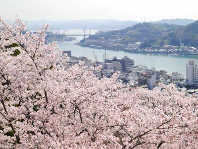 尾道にて、お花と猫とお茶に癒される散歩コース♪