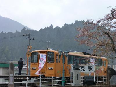 根尾東谷川沿いの桜を愉しむ・・・ルンルン♪(岐阜県・本巣市)