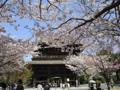 鎌倉散歩 1