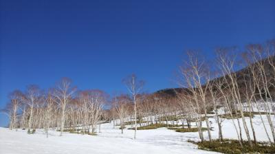 ☆彡モール温泉を求めて北海道十勝へ!2泊3日旅☆彡