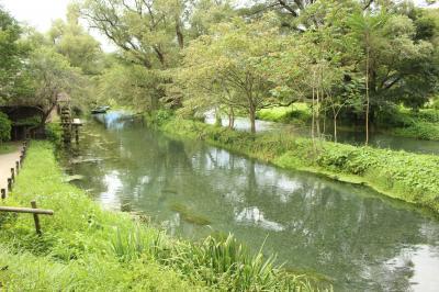 北陸周遊ドライブ 9 安曇野とわさび田 そして篠ノ井廃線跡
