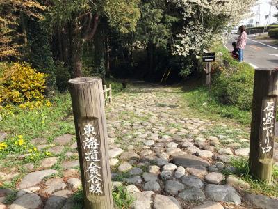 旧東海道石畳金谷坂を歩く