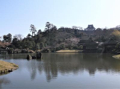 名勝の玄宮園(滋賀県彦根市)へ行ってきました・・・