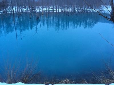 どこかにマイル☆青い池を見にいく