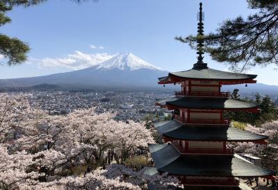 2018年4月富士と桜と五重の塔の絶景