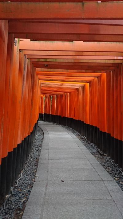 2018年4月★京都半日観光★