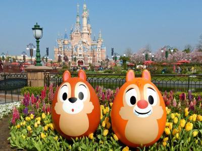9歳子連れ中国(後・上海ディズニー編):楽しい!けど疲れる!2度目のSDL