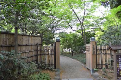 美しい日本庭園でお散歩。小石川後楽園
