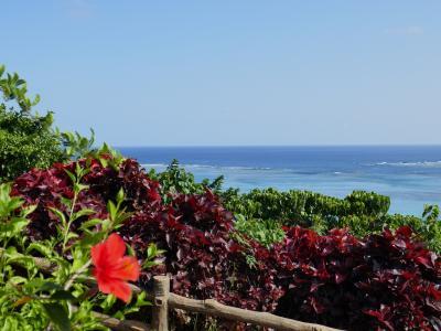 夏間近の海を満喫!石垣島、竹富島、西表島、前編