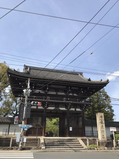 母との2人旅1 京都 弥勒菩薩に会って、保津川下り、嵯峨野で人力車。