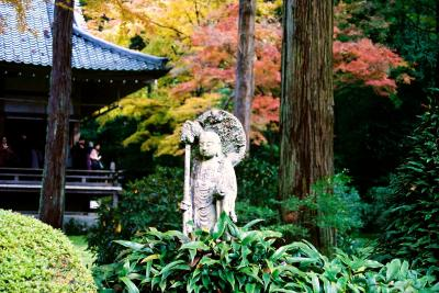母 K子と行く京都 2006秋   京都詣で No.5