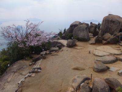 桜の宮島・弥山