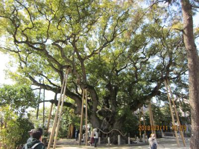 太田川から大府までのハイキング(大宮神社、ふき街道、げんきの郷、あいち健康の森)
