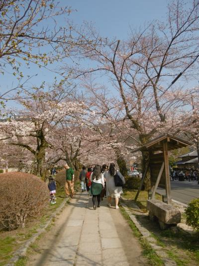 大人の修学旅行第2弾 The京都 を行く