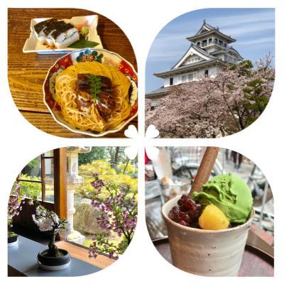 """""""行ってみたい日本の絶景""""の一つ彦根城の桜を見に・・・<後編> 長浜へ"""