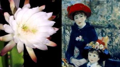 【動画】陶板名画の庭→植物園→ギリシアローマ美術館 半日で回る
