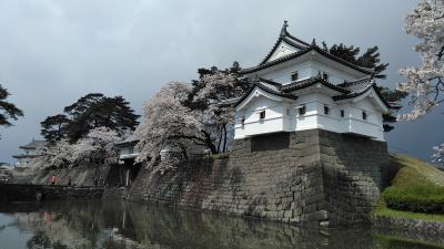 東北桜巡りのつもりが・新潟では雪に出会い:(;゙゚'ω゚'):サムィー