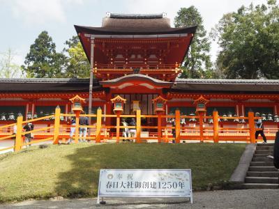 藤の春日大社と円成寺を訪ねる奈良旅1泊2日