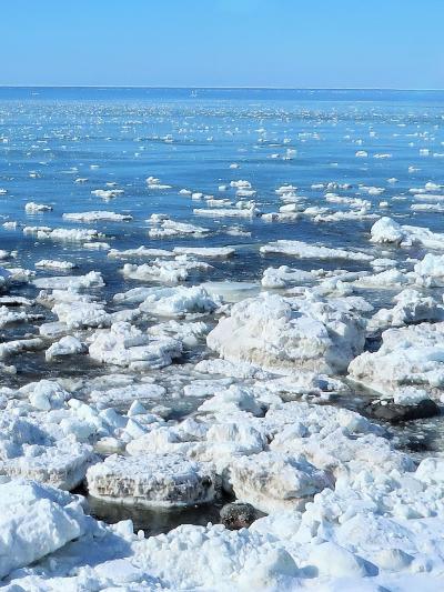 斜里-1 オホーツク海の光景=流氷接岸!快晴! ☆バスガイドも感動の連続
