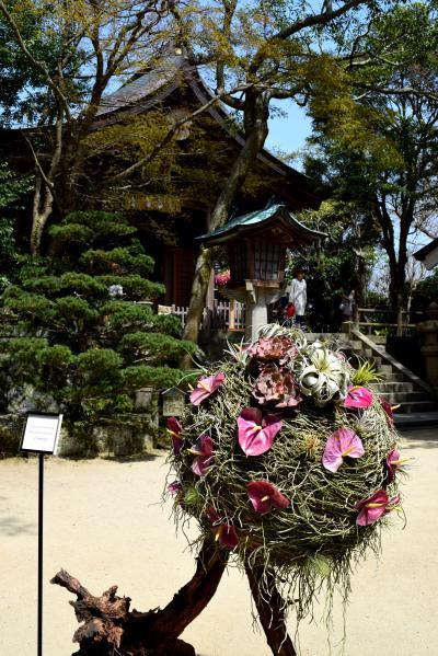 3 志賀島『志賀海神社』のニコライバーグマン