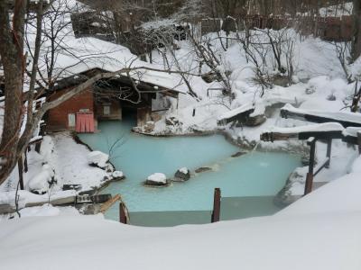白骨温泉で新年会
