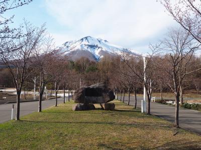 シルバーフェリーで行く青森桜旅(岩木山神社&世界一の桜並木)